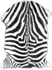 Gifts & More Vacht geit zebra 60x90cm (capra aegagrus hircus)