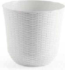 Grijze Forte Plastics 2x Witte plantenbakken/bloempotten 25 cm - Woon/tuinaccessoires/decoratie - Ronde bloempotten/plantenpotten voor binnen/buiten