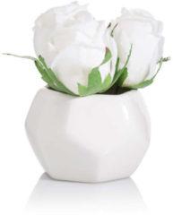 Fleurange Rosen-Dreierlei
