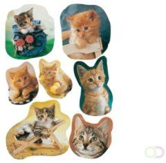 21x Katten/poezen Dieren Stickers - Kinderstickers - Stickervellen - Knutselspullen