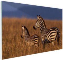 Bruine MuchoWow Moeder en baby zebra Glas 30x20 cm - klein - Foto print op Glas (Plexiglas wanddecoratie)