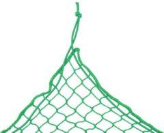 Groene VidaXL Aanhangwagennet 2x3 m PP