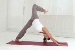 Bruine Yogamat basic OM choco brown Fitnessmat YOGISTAR
