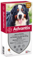 Advantix Spot On 600 6 ml - Anti vlooien en tekenmiddel - 6 pip 40-60 Kg