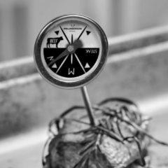 Zwarte Gusta® Gusta Barbecue thermometerset 4-delig 03250140
