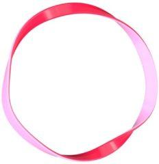 Rode Invisibobble Basic Jelly twist Invisibobble Basic - Jelly Twist 10 stuks (haarband/haarelastiek)