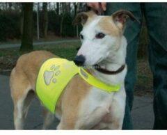 Gele SAFETY GEAR Veiligheidsvest hond - Reflecterend - Maat L