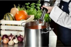 Royal Catering Staafmixer - 350 W - 250 mm - 16.000 t/min