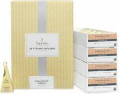 Kamille citroen horeca doos met 48 piramides Tea Forté
