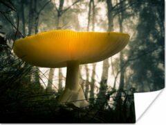 PosterMonkey Gele paddenstoel in een bosrijke omgeving Poster 40x30 cm - klein - Foto print op Poster (wanddecoratie woonkamer / slaapkamer) / Planten Poster