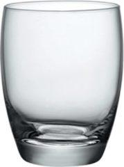 Transparante 12x Stuks waterglazen/sapglazen 300 ml - Fiore - Drinkglazen - Water/sapglas