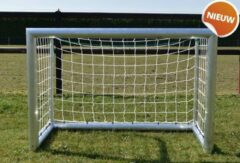 Grijze Avyna 2 * Aluminium Pro Goal 150 x 100 cm incl. net (AVAV-01-COMBI-PRO)