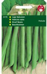 Hortitops Stamslabonen Phaseolus vulgaris Prelude Z. Dr. - Sla- of sperziebonen - 100gram
