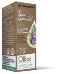 Olfacto Fijne lavendel 19 10 Milliliter
