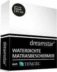 Witte Dreamstar Waterdichte Matrasbeschermer Tencel 90x210