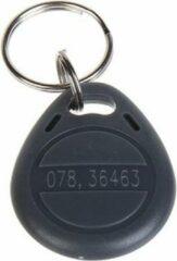 WL4 RFID tags grijs met key ring (10 stuks) met serienummer