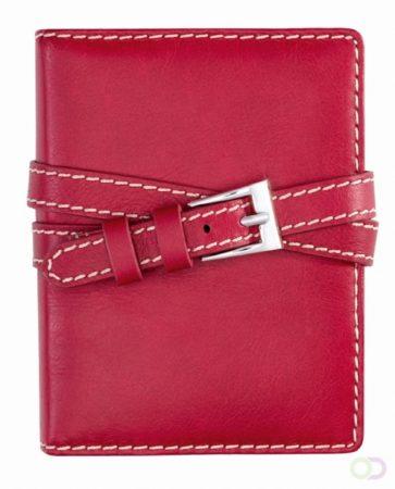 Afbeelding van Succes Omslag Senior 20 mm Double Belt Rood
