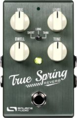 Source Audio True Spring Reverb