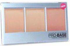 Roze Mua Pro Conceal Brighten Kit Natural