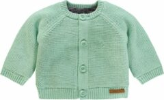 Grijze Noppies Unisex vest Lou - Grey Mint - Maat 68