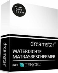 Witte Dreamstar Waterdichte Matrasbeschermer Tencel 160x200