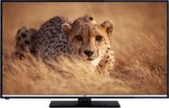 JVC LT50V54JF 50 Zoll LED TV