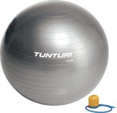 Grijze Tunturi Fitnessbal - Gymball - Swiss ball - Ø 75 cm - Inclusief pomp - Zilver