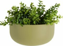 Pt, Oval wide - Wand Plantenpot - Keramiek - 20x10,8x9,5cm - Mat Groen (Olijfgroen)