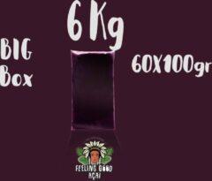 Feeling Good Acai Bevroren açaí pulp | biologisch | ongezoet |wild | Super Premium kwaliteit 16%| 6 kg (60 x 100g)