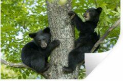 StickerSnake Muursticker Baby beren - Twee zwarte beren zitten in een boom - 90x60 cm - zelfklevend plakfolie - herpositioneerbare muur sticker