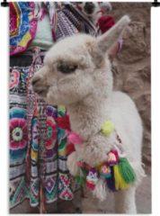 1001Tapestries Wandkleed Alpaca - Baby alpaca met ketting Wandkleed katoen 60x90 cm - Wandtapijt met foto