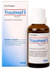 Heel Traumeel S Druppels - 30 ml