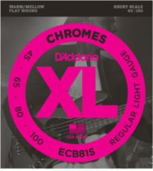 D'Addario ECB81S 45-100 Chromes Flatwound Stainless Steel