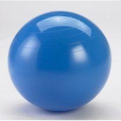 Blauwe Gymnic (Ledraplastic) Gymnic Physio Gymnic 95 - Fitnessbal - Blauw - Ø 95 cm