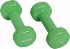 Schildkrot Fitness Schildkröt Fitness Dumbbells - 2 x 1 kg - Gietijzer - Groen
