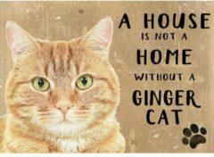 Asign4u.nl Metalen Wandbord a House is not a home without a Ginger Cat - 20 x 30 cm