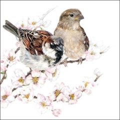 Bruine Ambiente papieren servetten Sparrows Blossom