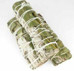 Groene FineGoods Witte Salie en eucalyptus - white sage and eucaplytus- smudge stick - 1 stuk - 10cm - meditatie - yoga - huis reiniging - zuivering