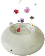 Chi Natural Life CHI Aromalogica E-stone, wit, vernieuwd