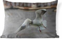 Witte PillowMonkey Sierkussen Chinese kokmeeuw voor buiten - Een Chinese kokmeeuw met gespreide vleugels - 50x30 cm - rechthoekig weerbestendig tuinkussen / tuinmeubelkussen van polyester