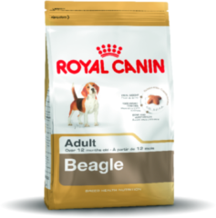 Royal Canin Bhn Beagle Adult - Hondenvoer - 3 kg