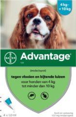 Advantage Hond 4 pip - Anti vlooien en luizenmiddel - 1 ml 4-10kg