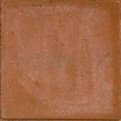 Gardenlux 25 stuks! Betontegel rood 30x30x4.5 cm