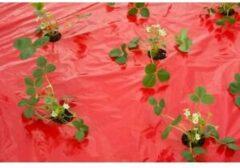 Nature Kweekfolie Aardbei - Groeifolie Gronddoek - 0.95x5 m Rood Anti-Uv