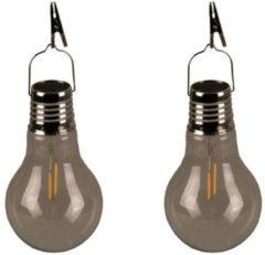 Zilveren Luxform Sfeerverlichting Filament Bulb 10 X 17 Cm Glas 2 Stuks