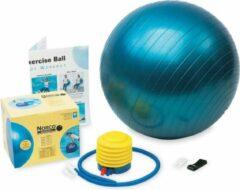 Therapieballen - 45 cm - Norco