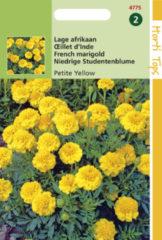 Gele Buzzy Seeds Hortitops Zaden - Tagetes Patula Nana Petite Yellow