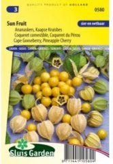 Oranje Sluis Garden - Ananaskers (Physalis peruviana)